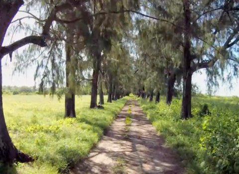 Perola do Índico Promo Arquipélago das Quirimbas